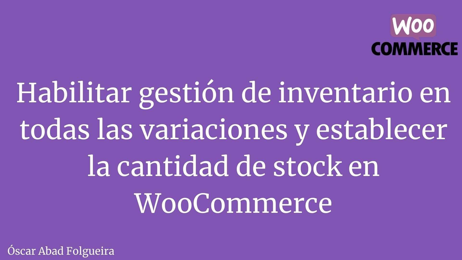 WooCoomerce Snippet - Habilitar gestión de inventario en todas las variaciones y establecer la cantidad de stock en WooCommerce.